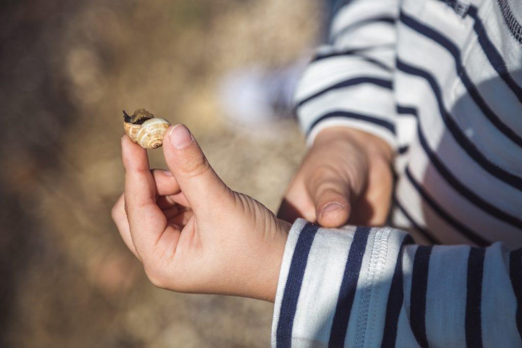 child holds snail