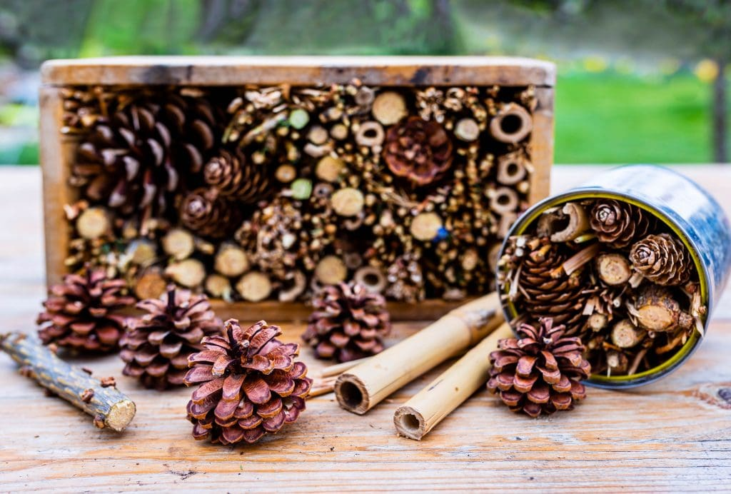 insect hotel, bug hotel, insect home