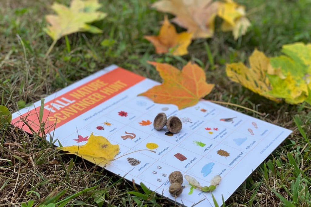Fall / Autumn Nature Scavenger Hunt